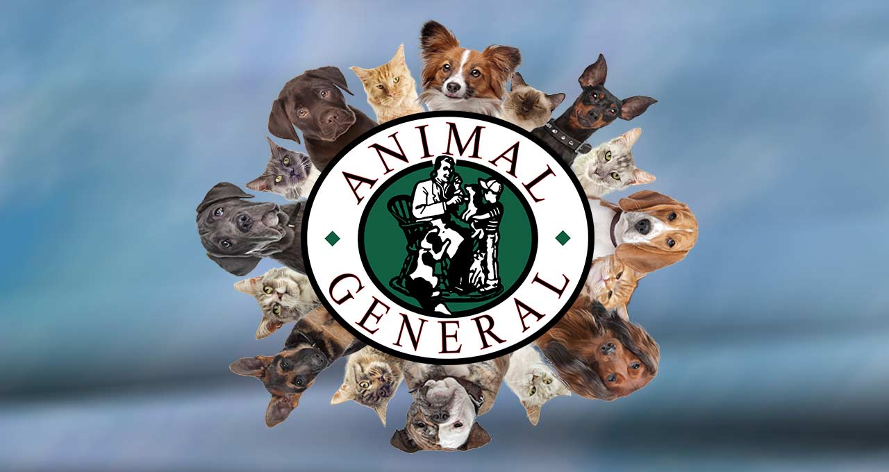 Animal General Cranberry animal hospital services for all pets logo surrounded by cats and dogs